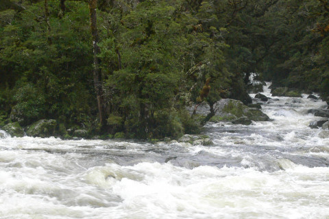 Thumbnail of roar river header photo